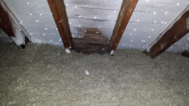 This picture shows frost inside the attic on the underside of the roof deck. This clearly indicates a moisture problem inside the attic.